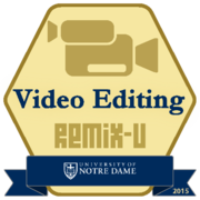 Remix: Video Editing