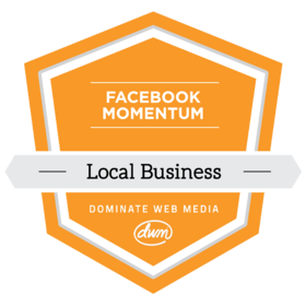 Facebook Momentum - Local and Service Businesses