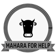 Using Mahara to provide support and guidance
