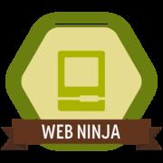 Web Ninja - Info Evaluator