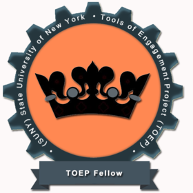 TOEP Fellow