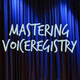 Mastering Voiceregistry