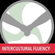 Intercultural Fluency