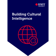Building Cultural Intelligence